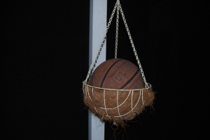 bball-planter-close