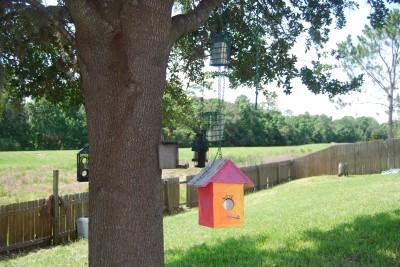 bird feeder house weight